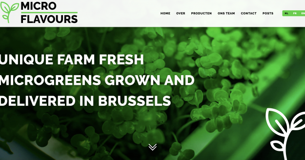 Website microflavours.brussels